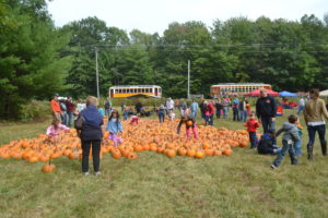 pumpkin picking at event